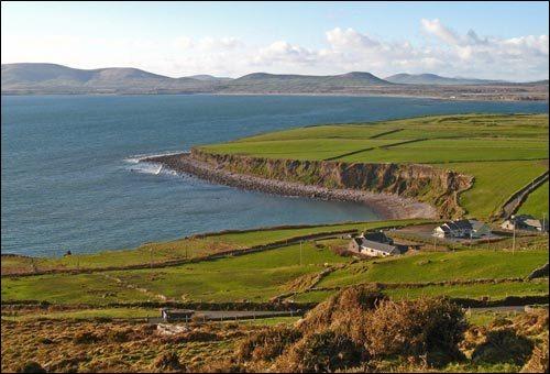 ▲ 아일랜드의 초록색 평원은 거대한 농산물 생산지다