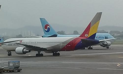 ▲ 대한항공과 아시아나항공 각 항공사의 비행기들이 김포공항 내에 위치한 모습.