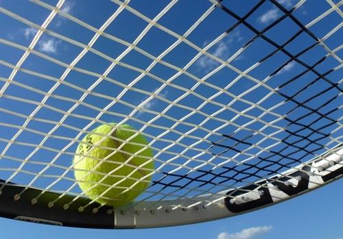 테니스목.jpg