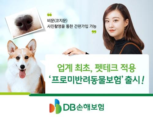 (보도사진)DB손해보험, 펫테크 적용'프로미반려동물보험' 출시.jpg
