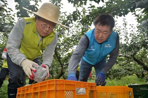 (20190910)(보도자료) NH농협금융, 태풍 링링 피해극복 위한 전사적 지원 나서 사진3.JPG