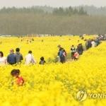 중국인 관광 의존도 낮추기…정부 밀고 제주도 당긴다