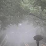 [날씨]내륙 소나기…제주·전남 장맛비