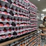 정부, '살충제 계란' 철저히 골라낸다...420개 농장 보완조사