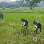 강진 여고생은 어디 있나…실종 6일째 경찰 '대대적 수색'
