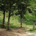 서울대공원 토막시신 오늘 부검…10일 전후 살해된 듯