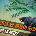 [카드뉴스] 북극곰은 왜 흉물이 되었나…'아까운 내 세금?'