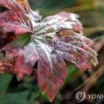 [오늘날씨] 어제보다 더 추워져…서울 6.5도, 일부지역은 영하권