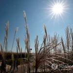 [내일날씨] 낮부터 이른 추위 풀려…중서부 미세먼지 '나쁨'