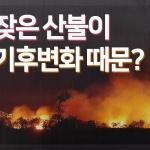 [카드뉴스]잦은 산불이 기후변화 때문?