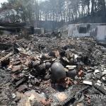 '강원 산불' 보험금 청구 400여건 접수