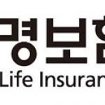 생명보험협회, 강원 산불피해 성금 1529만원 전달