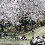 [내일날씨] 낮 최고 28도 초여름 기온, 수도권 미세먼지 '나쁨'