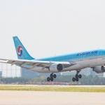 대한항공, 태국발 인천행 여객기서 '버드 스트라이크' 흔적 발견