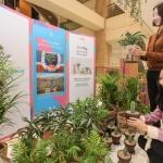 현대百, 트리플래닛과 공기정화 식물 전문 팝업스토어 오픈