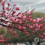 [내일날씨] 비 오전에 대부분 그쳐…미세먼지 '양호'
