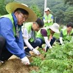 이대훈 NH농협은행장, 임직원들과 농촌 일손돕기 앞장
