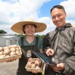 KT, 태양광 일체형 버섯 재배 실증 성공…영농태양광 융복합 사업 추진