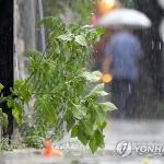 [내일날씨] 남부지방 이틀째 '비'…서울 낮 최고 29도