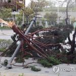 태풍 '링링'으로 26명 사상·시설물 3640곳 파손