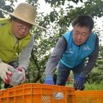 김광수 NH농협 회장, 태풍 링링 피해지역 찾아 복구 지원