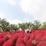 [내일날씨] 전국 대체로 '맑음'…제주도·남해상 강풍