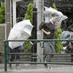 태풍 '하기비스'로 일본서 수십명 사망…방사성 폐기물도 유실