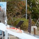 안유수 에이스 회장, 임진각 통일연못에 비단잉어 200여 마리 기증