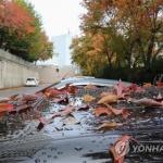 [내일날씨] 전국 오후부터 비…미세먼지 '보통'